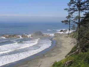 Pacific Northwest Coastline