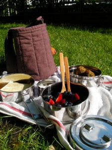 My picnic with the Tiffin Action Pack