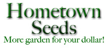 logo-hometown-copy